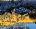 Beaver Lodge at Sunrise