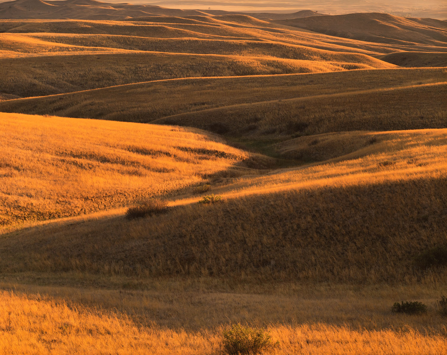 Sunset, Valley of the Little Bighorn